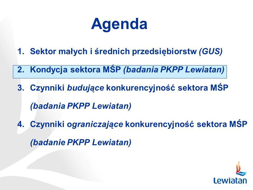 Agenda Sektor małych i średnich przedsiębiorstw (GUS)