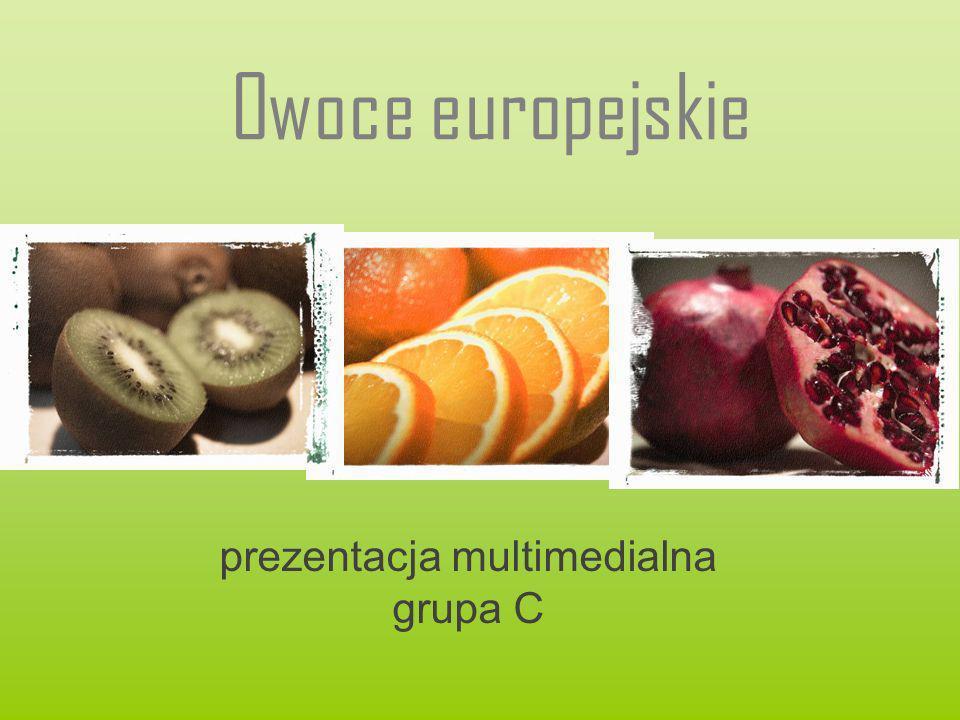 prezentacja multimedialna grupa C