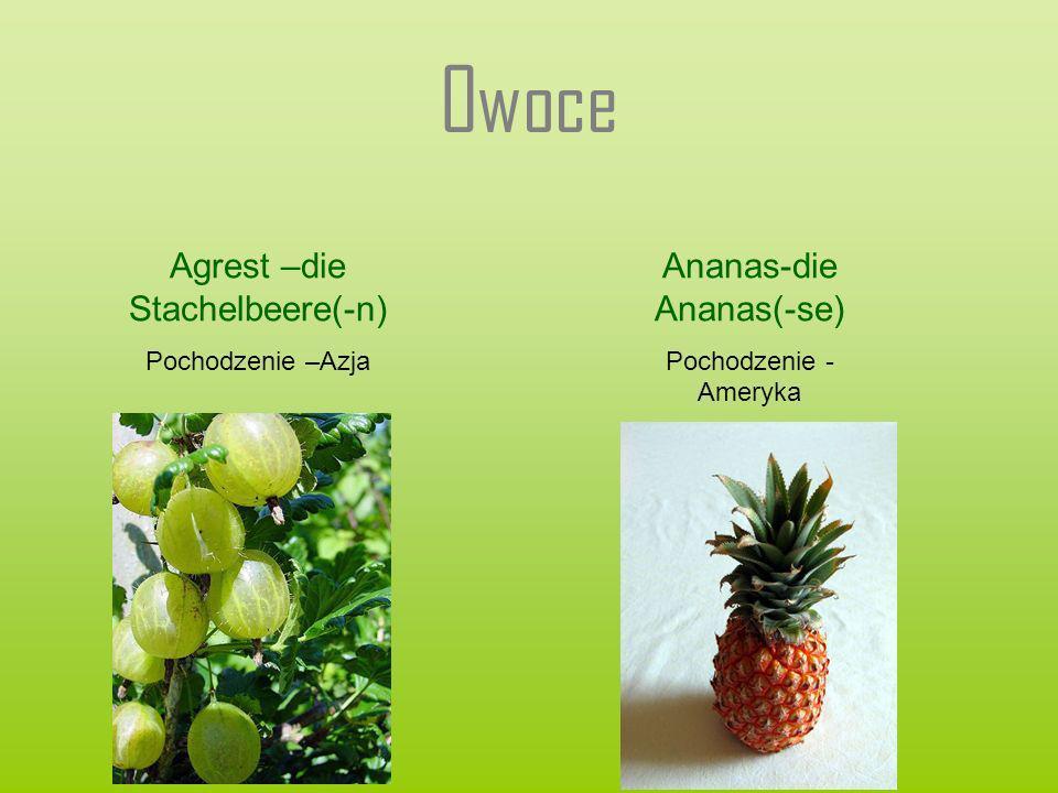 Owoce Agrest –die Stachelbeere(-n) Ananas-die Ananas(-se)