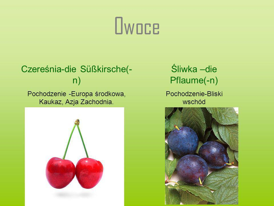 Owoce Czereśnia-die Süßkirsche(-n) Śliwka –die Pflaume(-n)