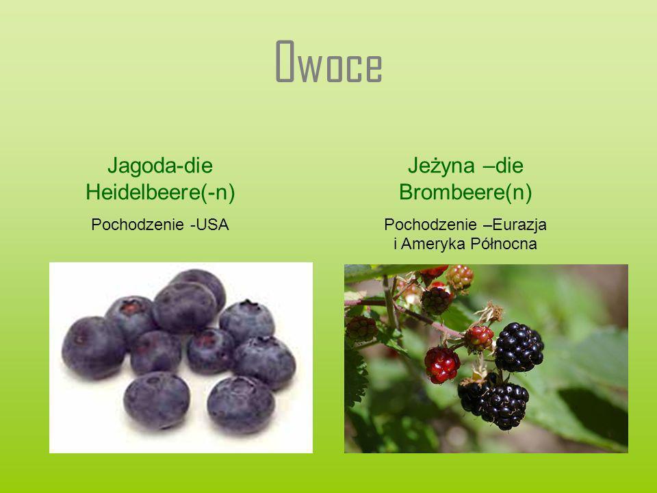 Owoce Jagoda-die Heidelbeere(-n) Jeżyna –die Brombeere(n)