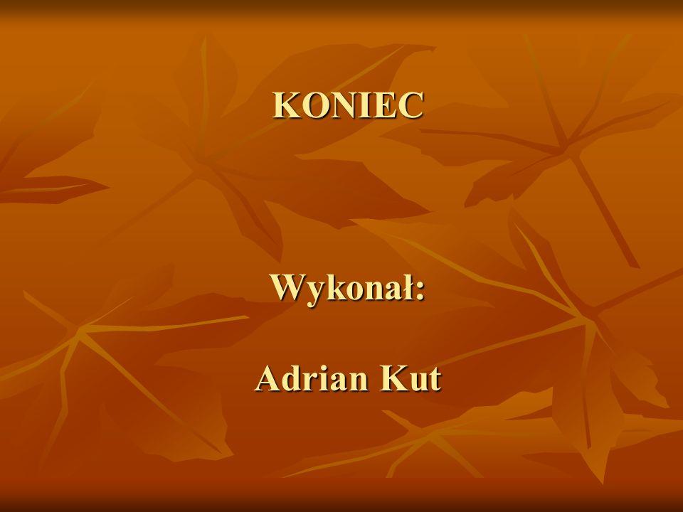 KONIEC Wykonał: Adrian Kut