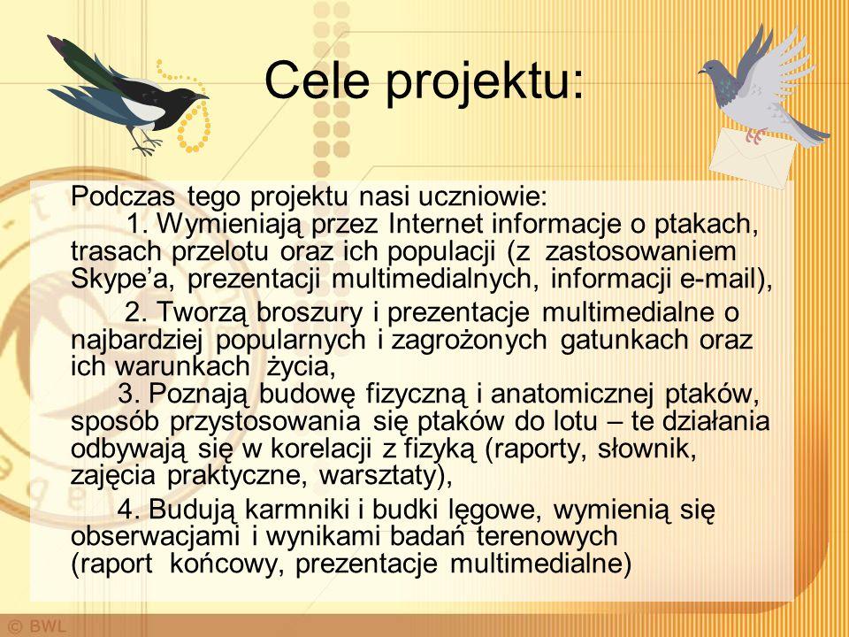 Cele projektu: