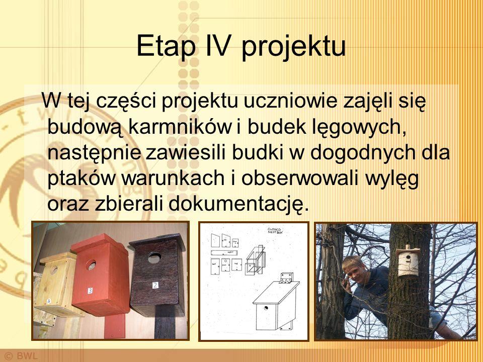 Etap IV projektu