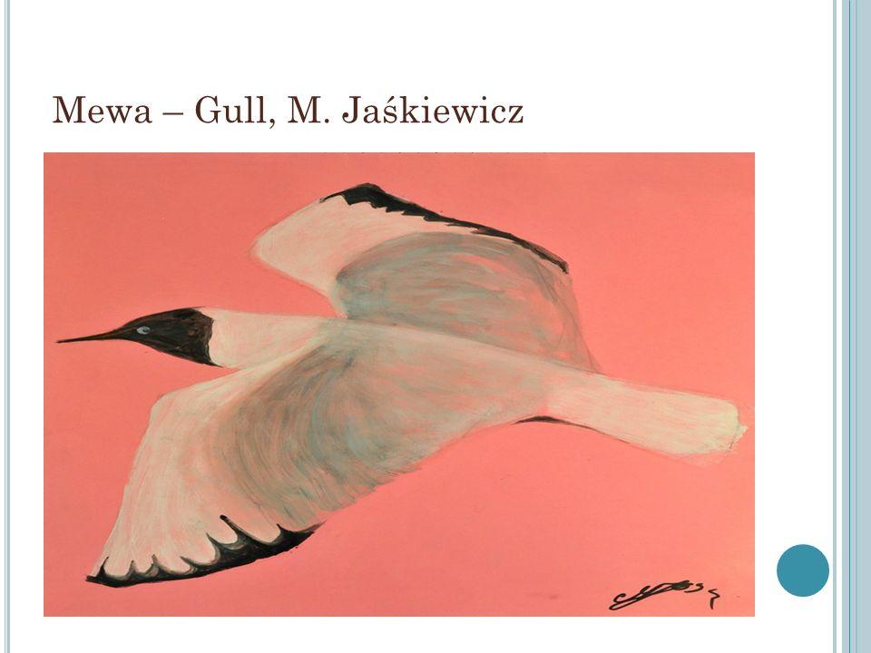 Mewa – Gull, M. Jaśkiewicz