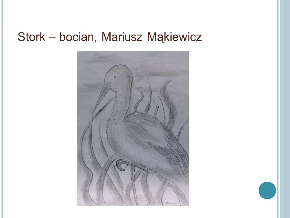 Stork – bocian, Mariusz Mąkiewicz