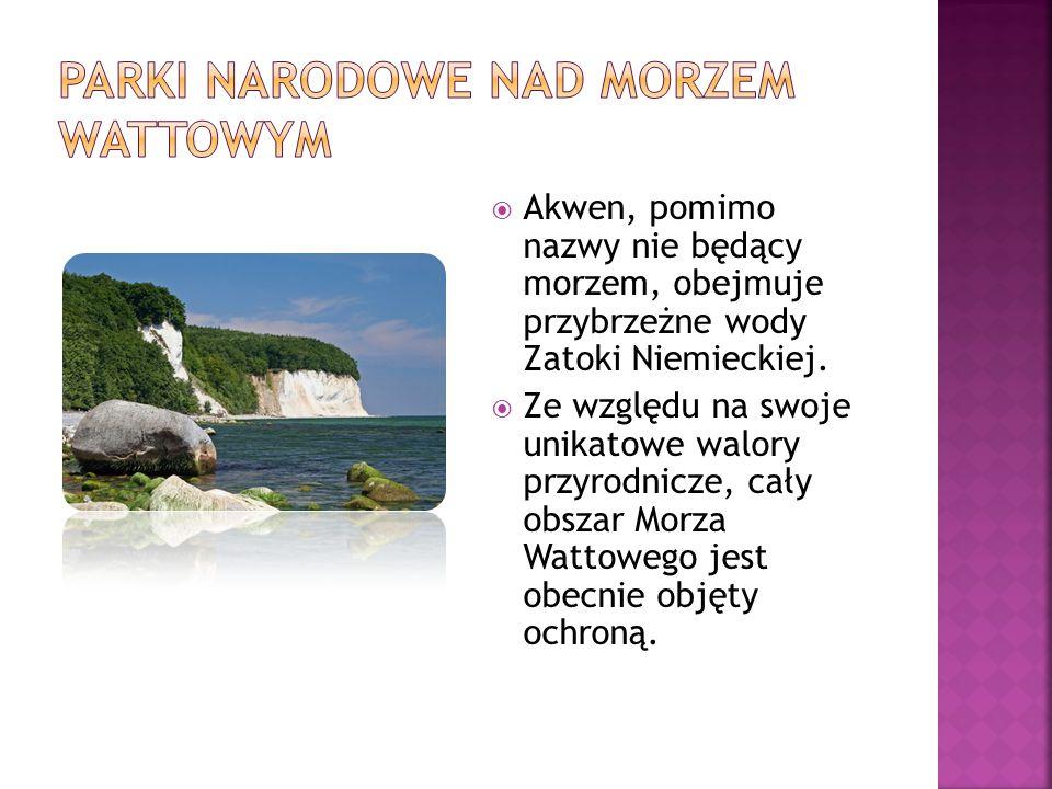 Parki Narodowe nad Morzem wattowym