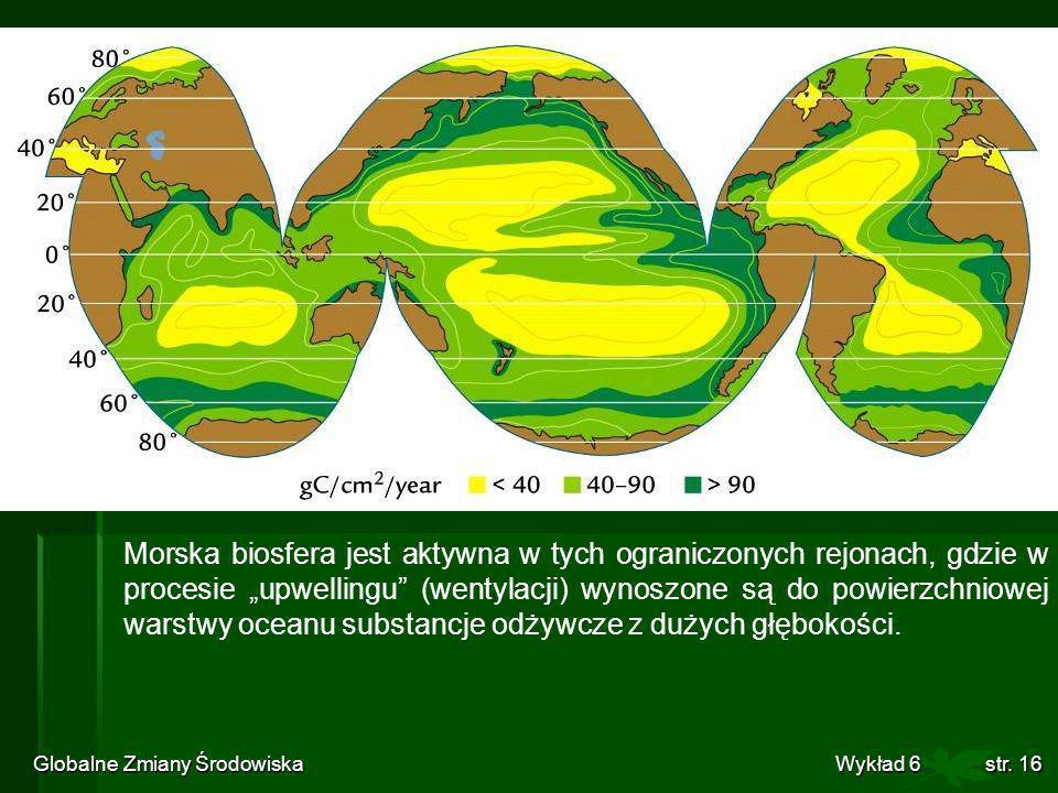 Globalne Zmiany Środowiska Wykład 6