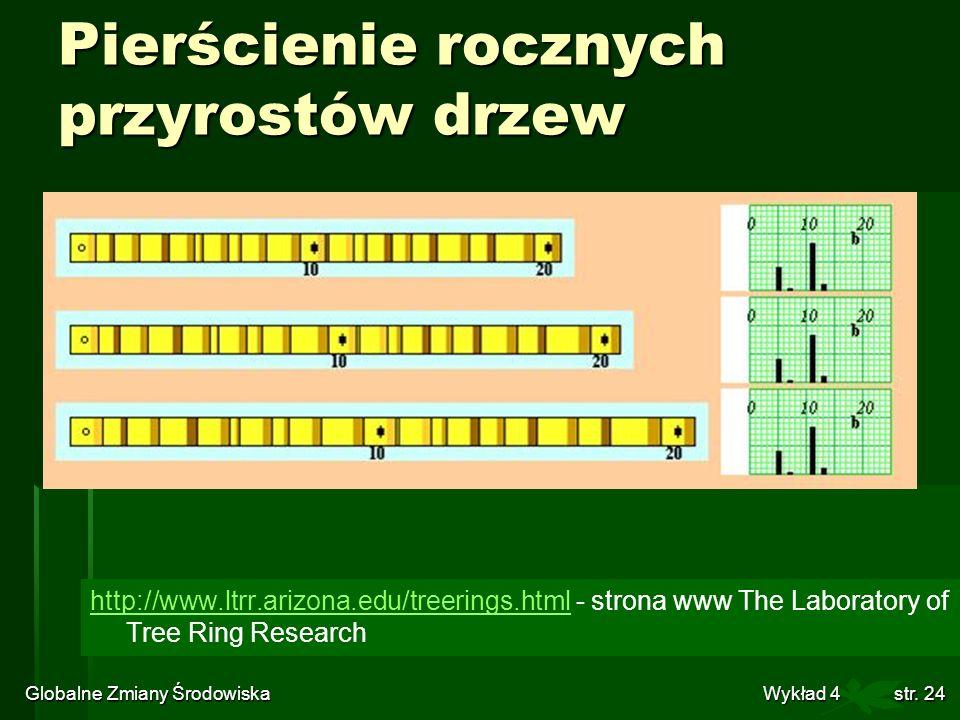 Pierścienie rocznych przyrostów drzew