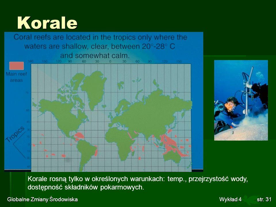 Globalne Zmiany Środowiska Wykład 4