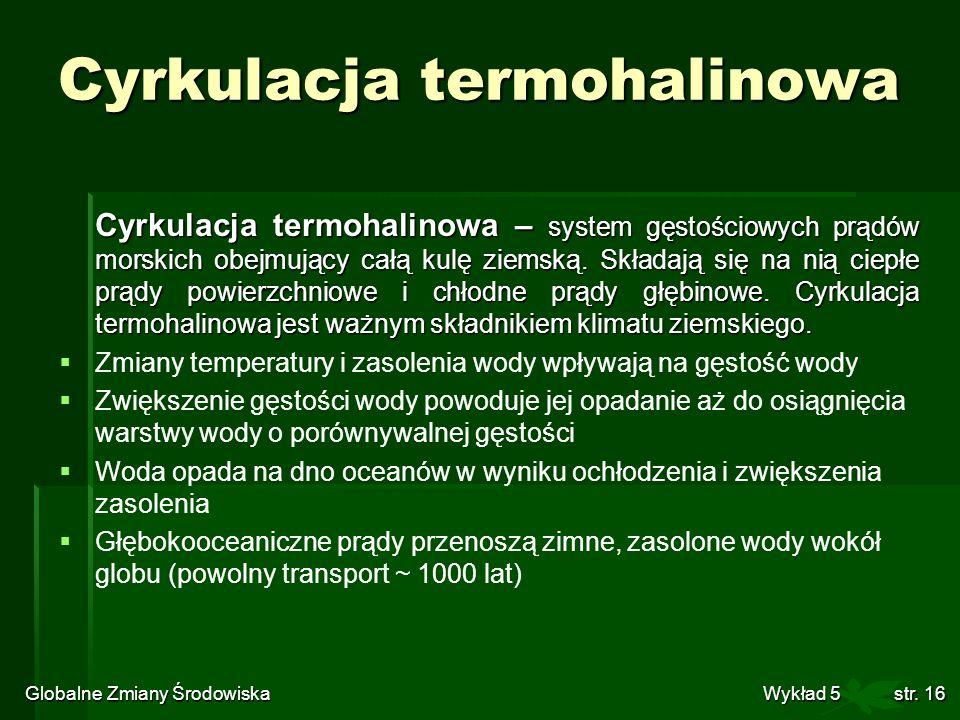 Cyrkulacja termohalinowa