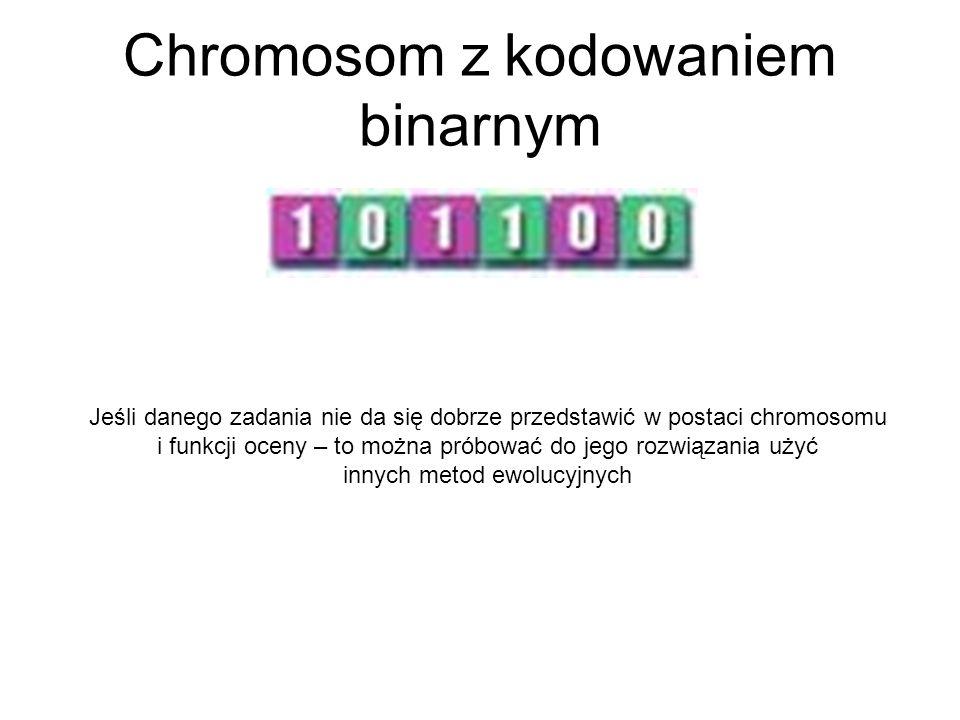 Chromosom z kodowaniem binarnym