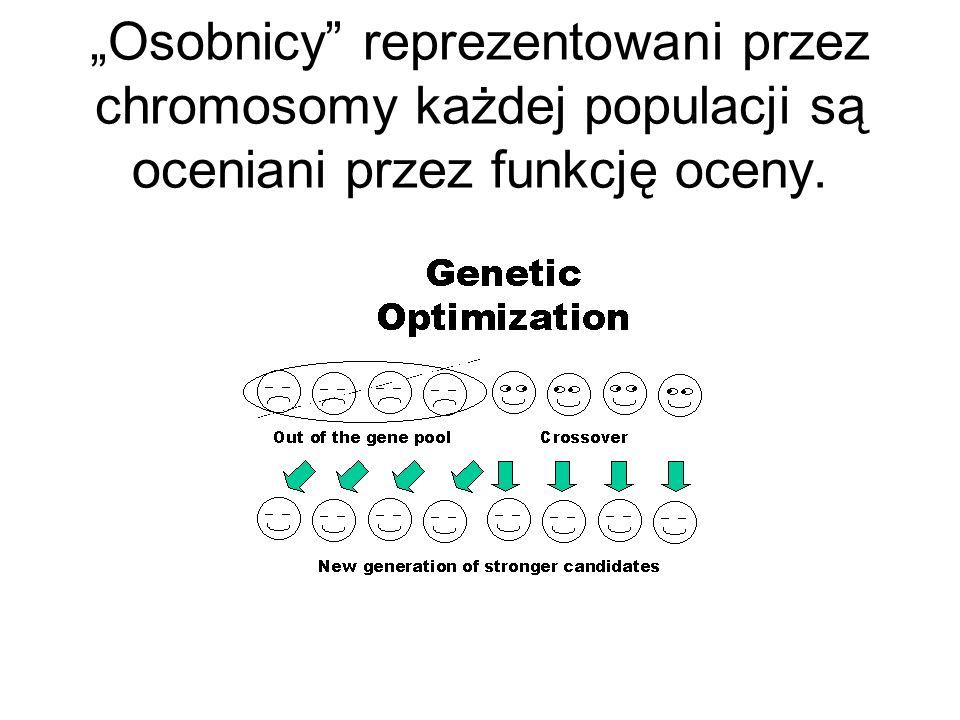 """""""Osobnicy reprezentowani przez chromosomy każdej populacji są oceniani przez funkcję oceny."""