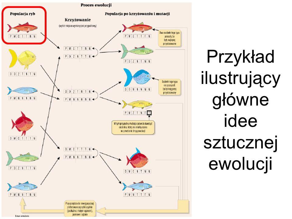Przykład ilustrujący główne idee sztucznej ewolucji