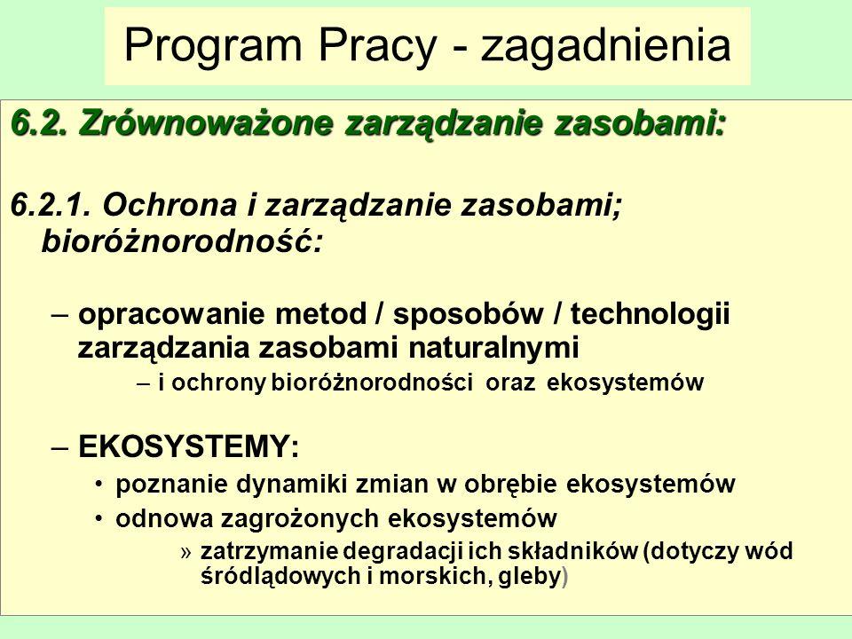 Program Pracy - zagadnienia