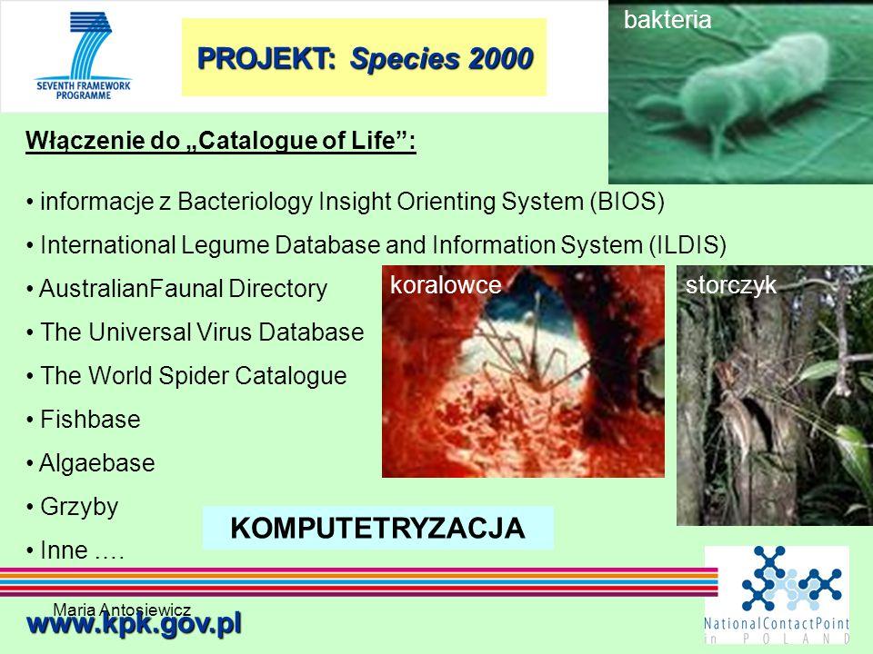 PROJEKT: Species 2000 KOMPUTETRYZACJA