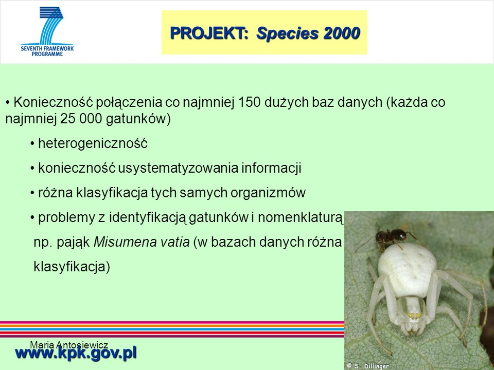 PROJEKT: Species 2000 www.kpk.gov.pl