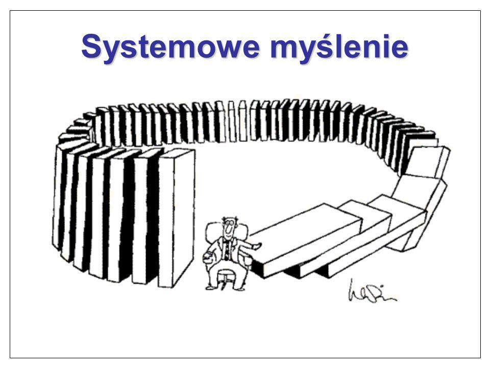 Systemowe myślenie Z innowacjami wiąże się ryzyko.