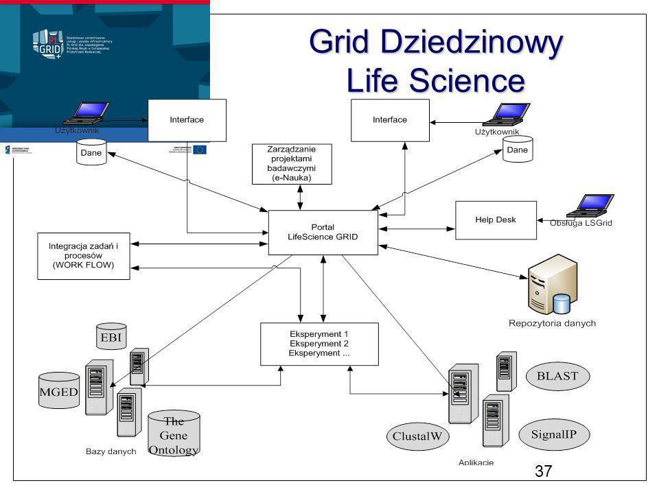 Grid Dziedzinowy Life Science