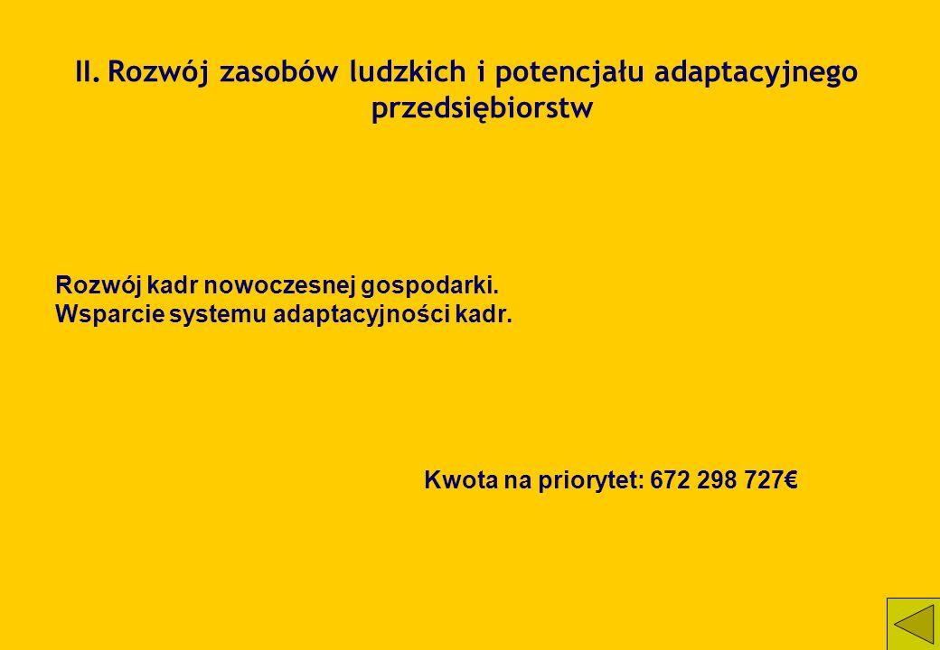 II. Rozwój zasobów ludzkich i potencjału adaptacyjnego przedsiębiorstw