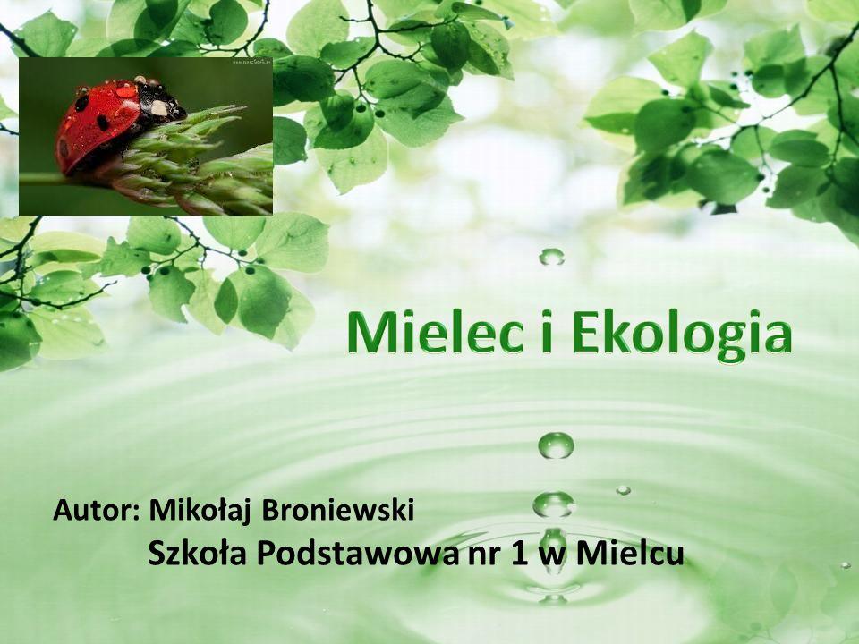 Mielec i Ekologia Szkoła Podstawowa nr 1 w Mielcu