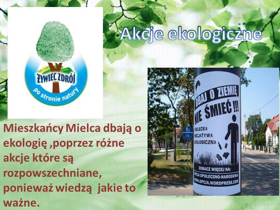 Akcje ekologiczne Mieszkańcy Mielca dbają o ekologię ,poprzez różne akcje które są rozpowszechniane, ponieważ wiedzą jakie to ważne.