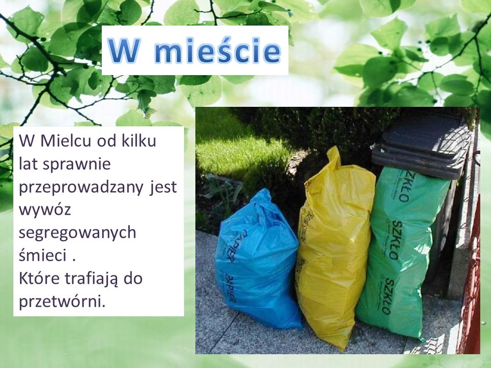 W mieście W Mielcu od kilku lat sprawnie przeprowadzany jest wywóz segregowanych śmieci .