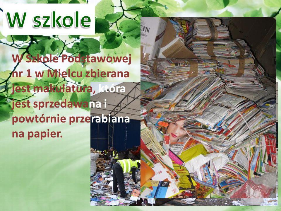 W szkole W Szkole Podstawowej nr 1 w Mielcu zbierana jest makulatura, która jest sprzedawana i powtórnie przerabiana na papier.