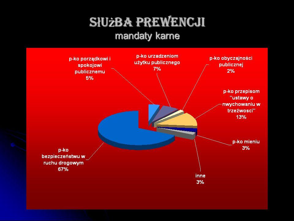 Służba prewencji mandaty karne