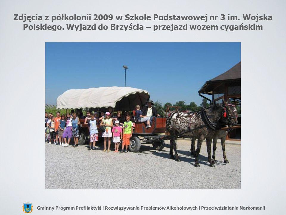 Zdjęcia z półkolonii 2009 w Szkole Podstawowej nr 3 im