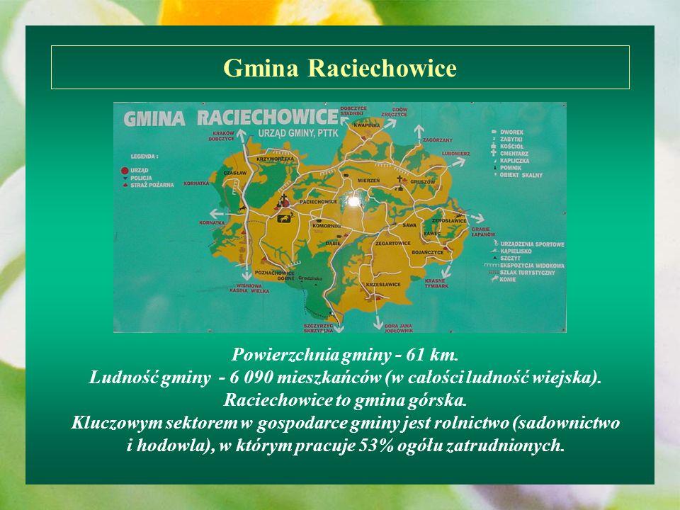 Gmina Raciechowice
