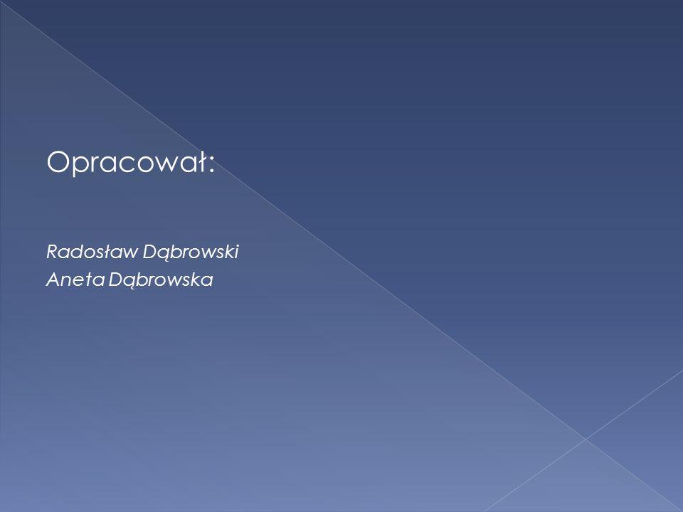 Opracował: Radosław Dąbrowski Aneta Dąbrowska