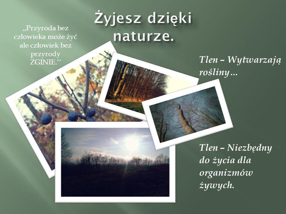,,Przyroda bez człowieka może żyć ale człowiek bez przyrody ZGINIE.''