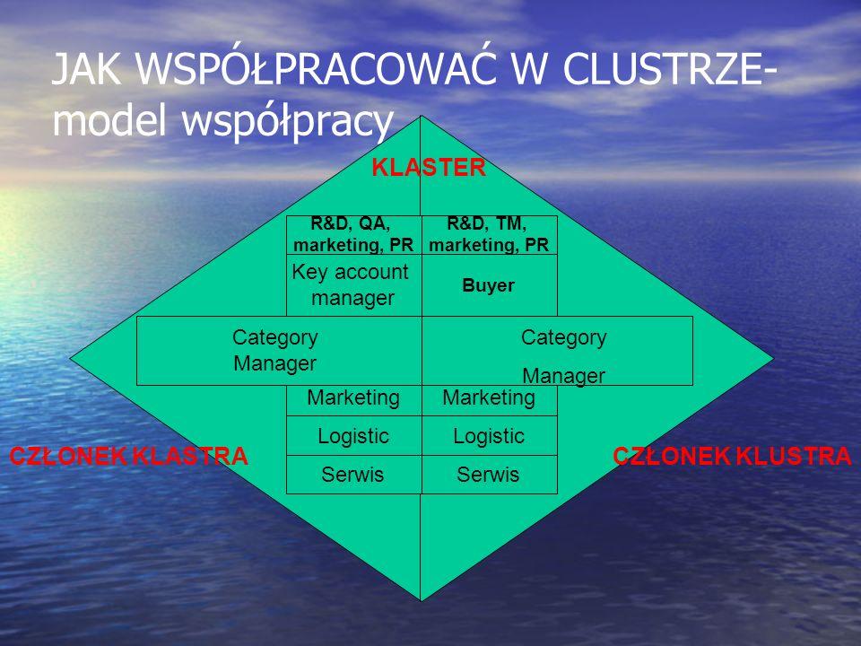 JAK WSPÓŁPRACOWAĆ W CLUSTRZE- model współpracy