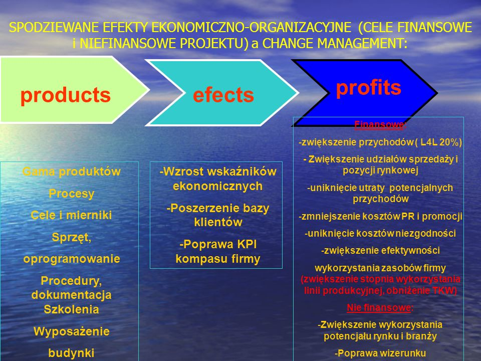 profits products efects