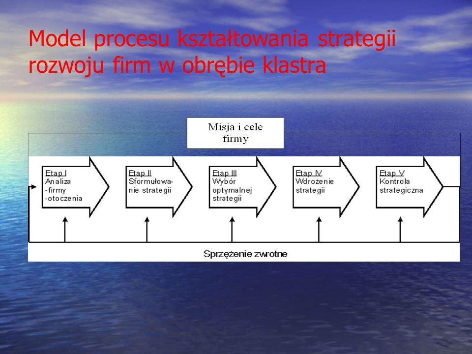 Model procesu kształtowania strategii rozwoju firm w obrębie klastra