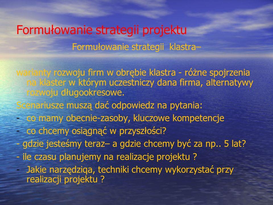 Formułowanie strategii projektu