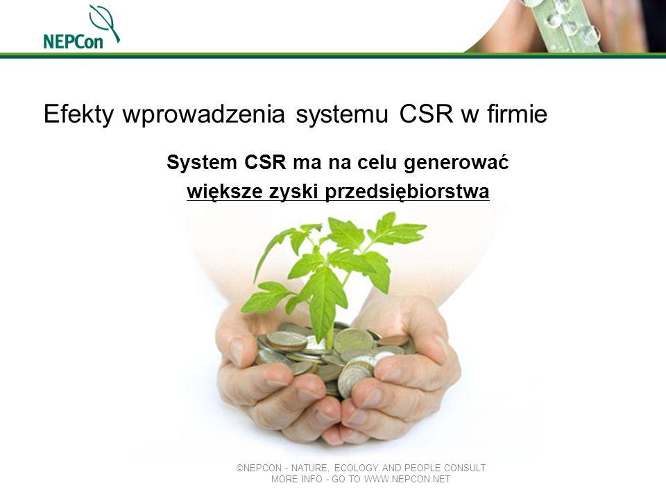 Efekty wprowadzenia systemu CSR w firmie