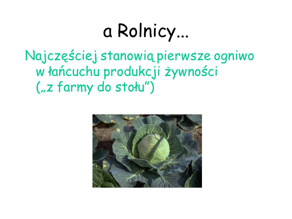 a Rolnicy...
