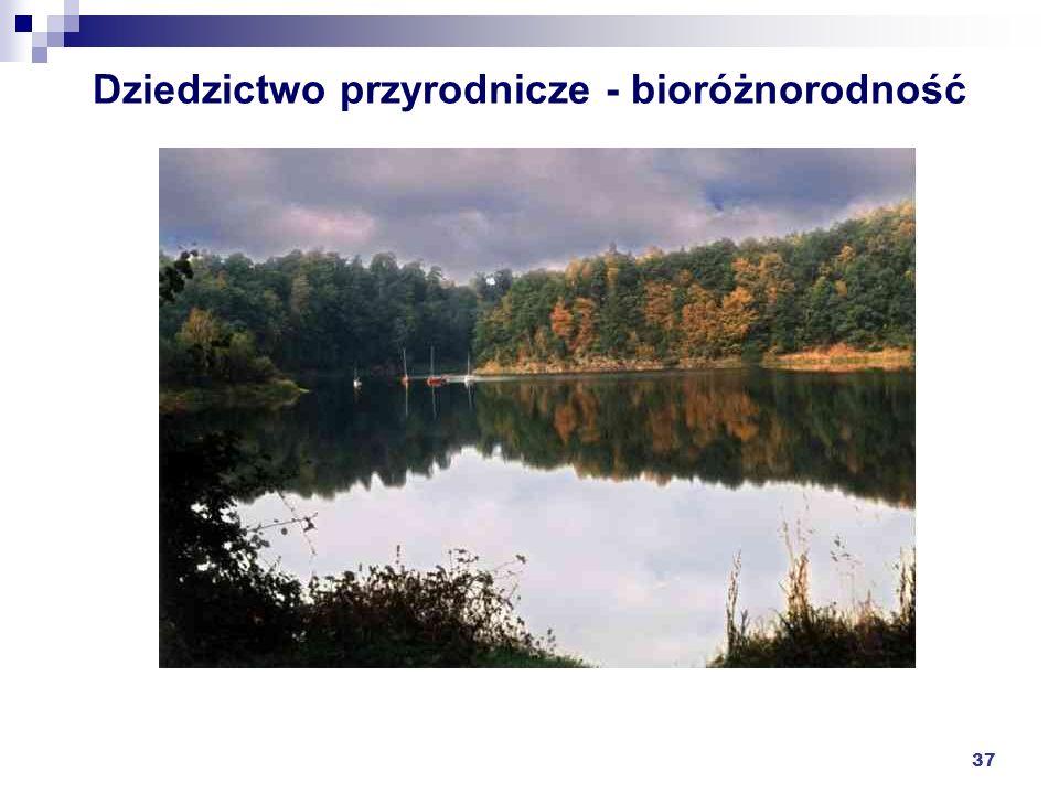 Dziedzictwo przyrodnicze - bioróżnorodność