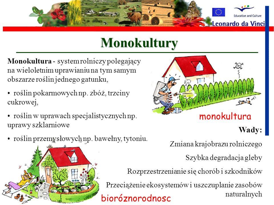 Monokultury monokultura bioróznorodnosc Wady: