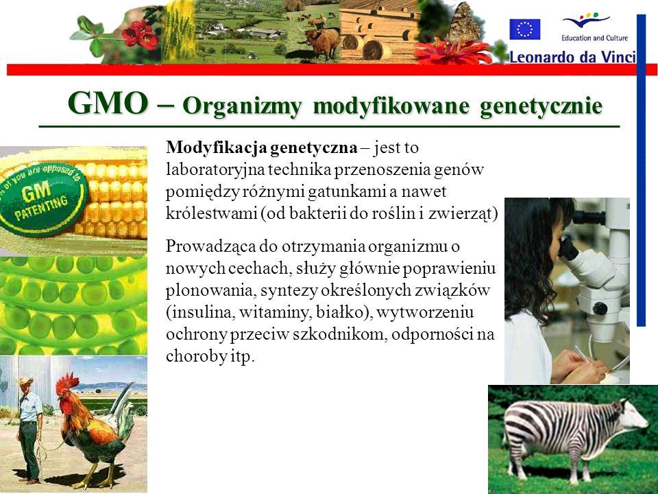 GMO – Organizmy modyfikowane genetycznie
