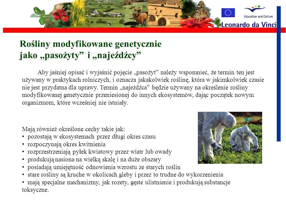"""Rośliny modyfikowane genetycznie jako """"pasożyty i """"najeźdźcy"""