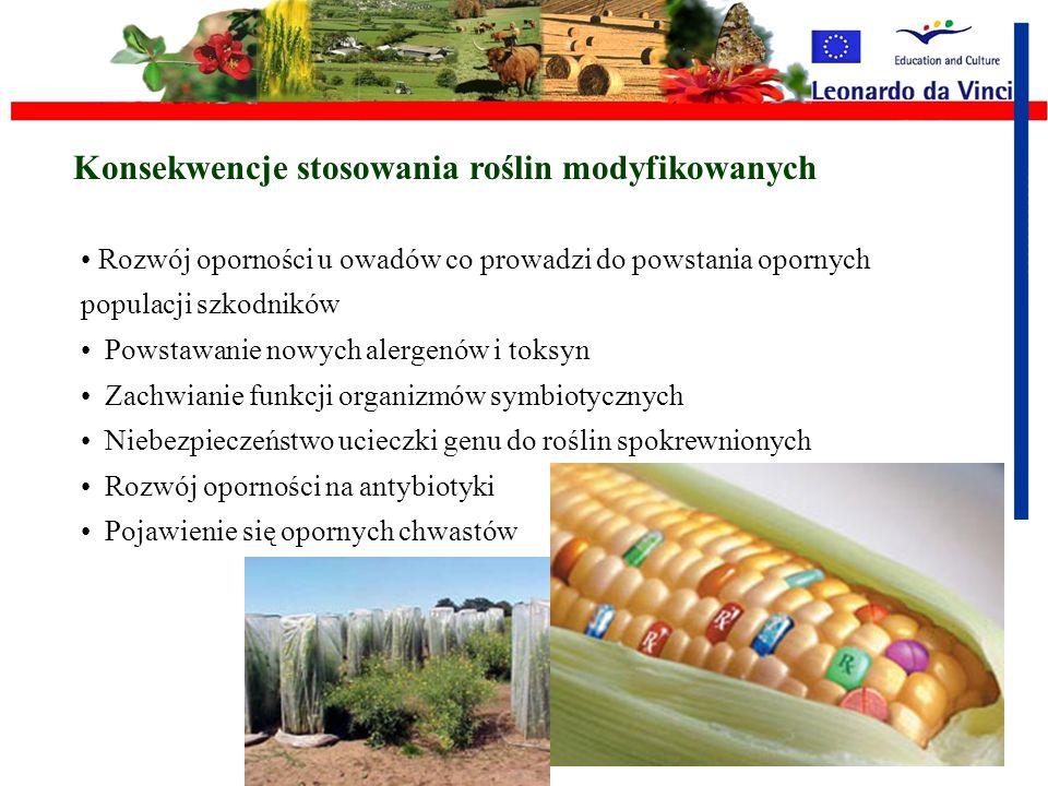 Konsekwencje stosowania roślin modyfikowanych