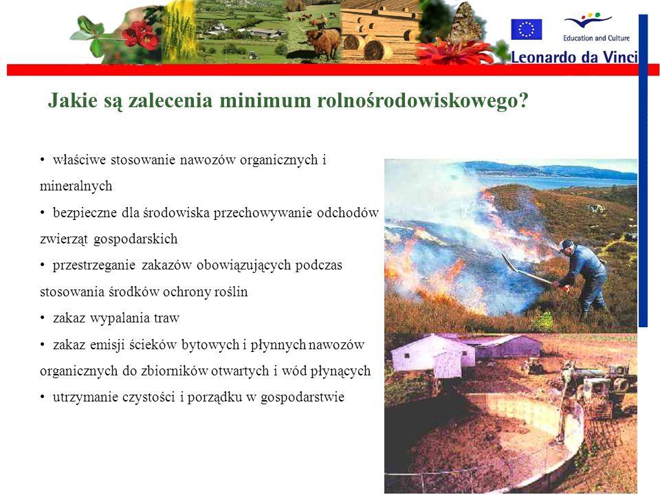 Jakie są zalecenia minimum rolnośrodowiskowego