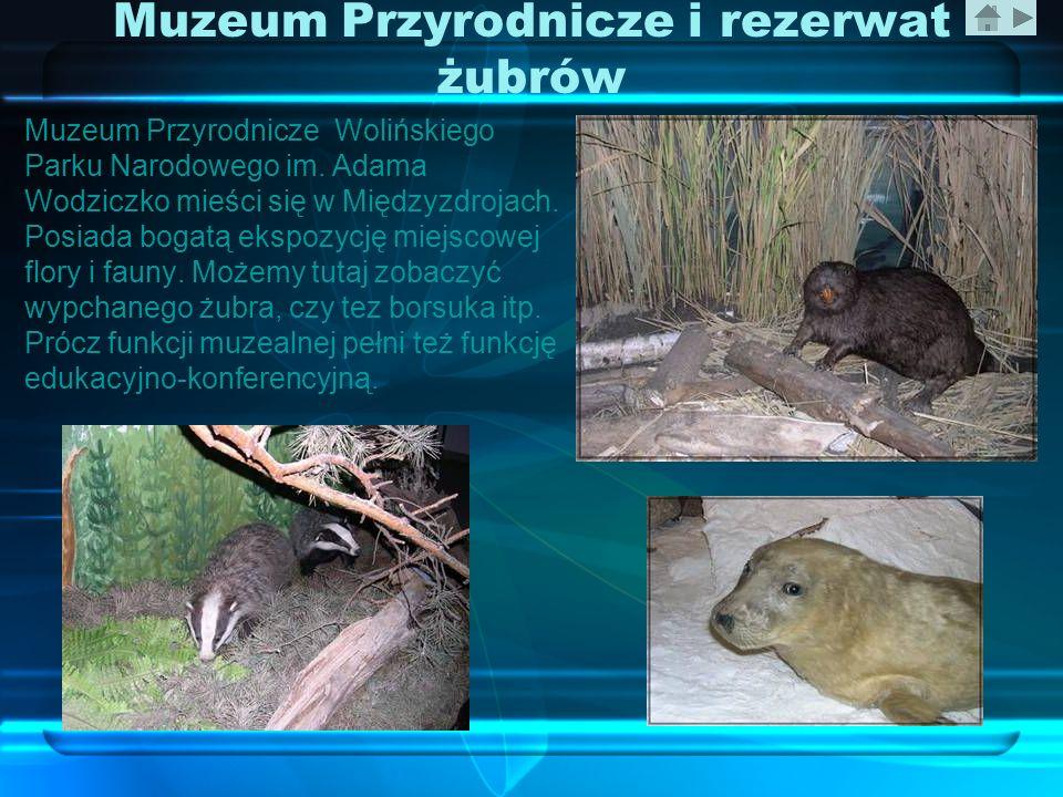 Muzeum Przyrodnicze i rezerwat żubrów