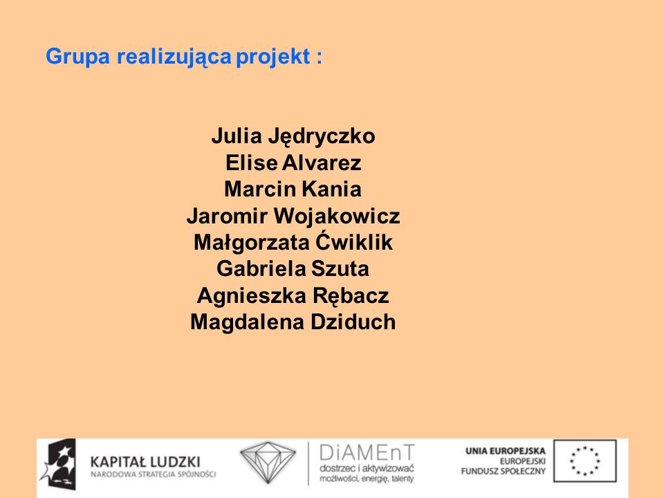 Grupa realizująca projekt :