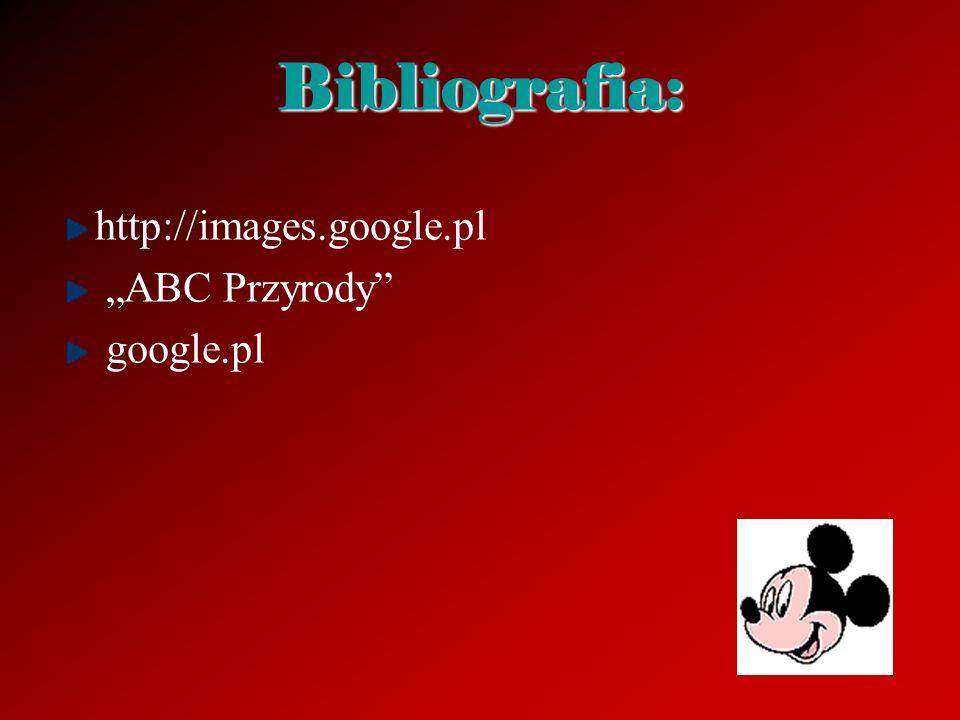 "Bibliografia: http://images.google.pl ""ABC Przyrody google.pl"