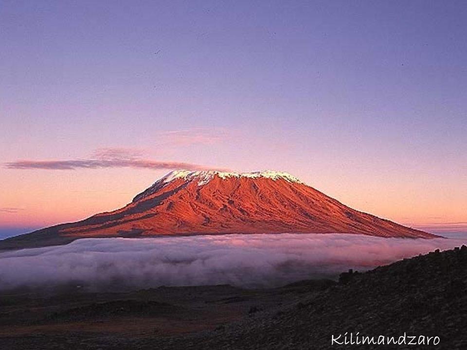 Kilimandzaro