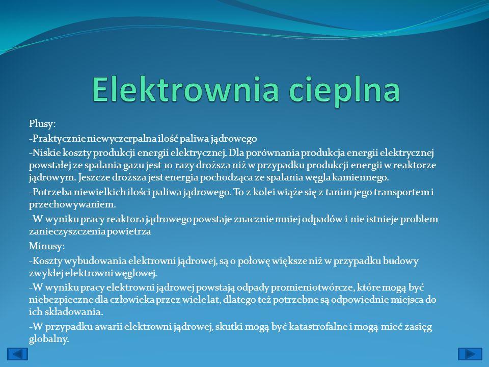Elektrownia cieplna Plusy: